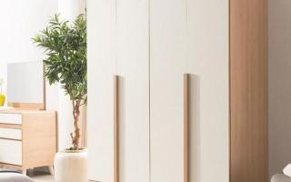 Mẫu tủ quần áo gỗ đẹp U54
