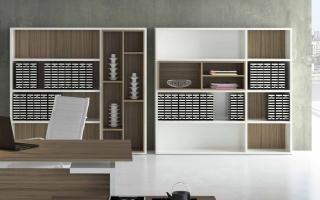 Mẫu tủ kệ hồ sơ văn phòng đẹp U17