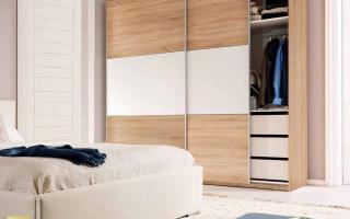 Mẫu tủ quần áo gỗ đẹp U21
