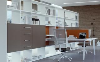 Mẫu tủ kệ hồ sơ văn phòng đẹp U15